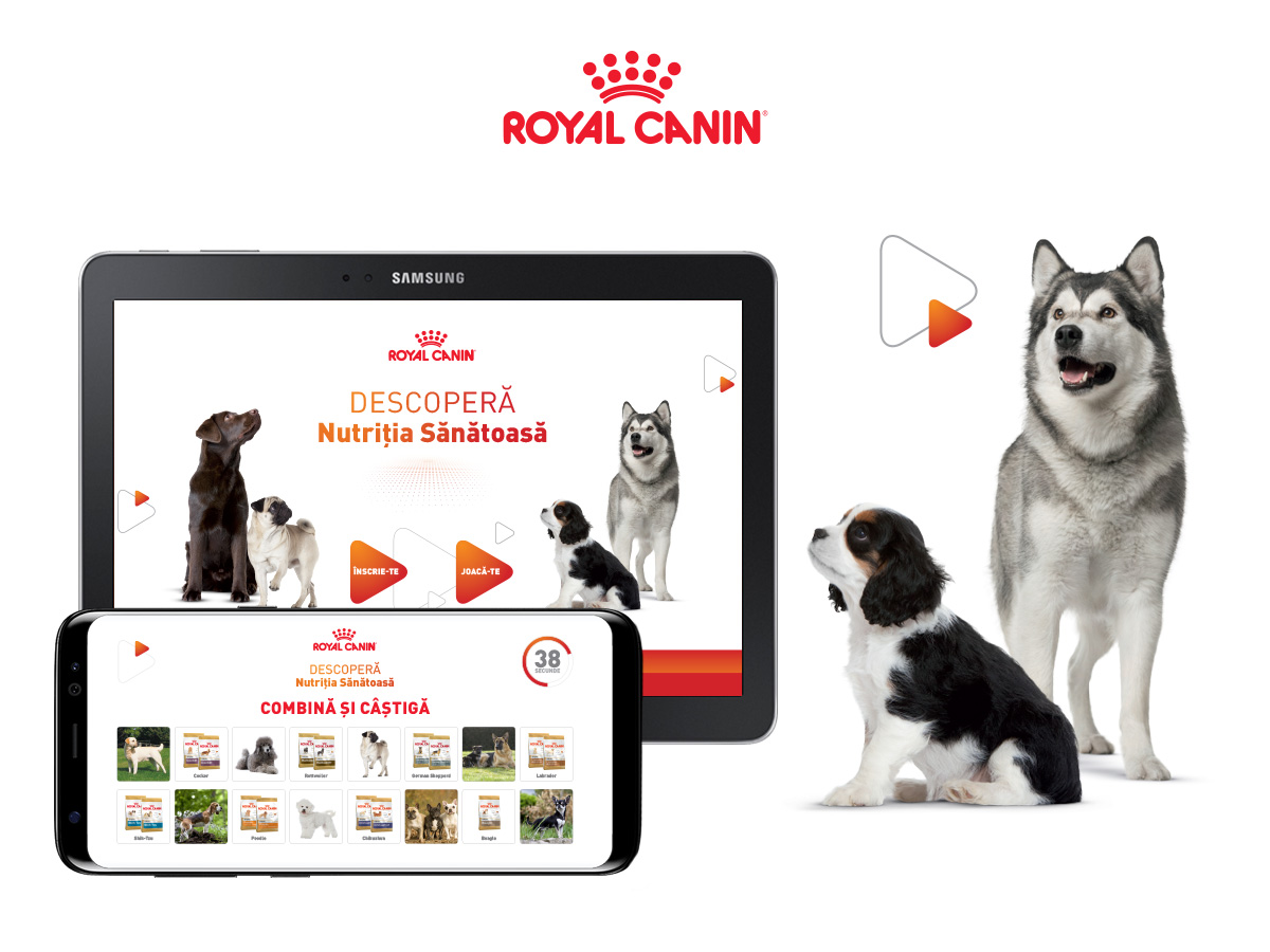 applications-platforms-website development-cre8ive geeks-royal-canin