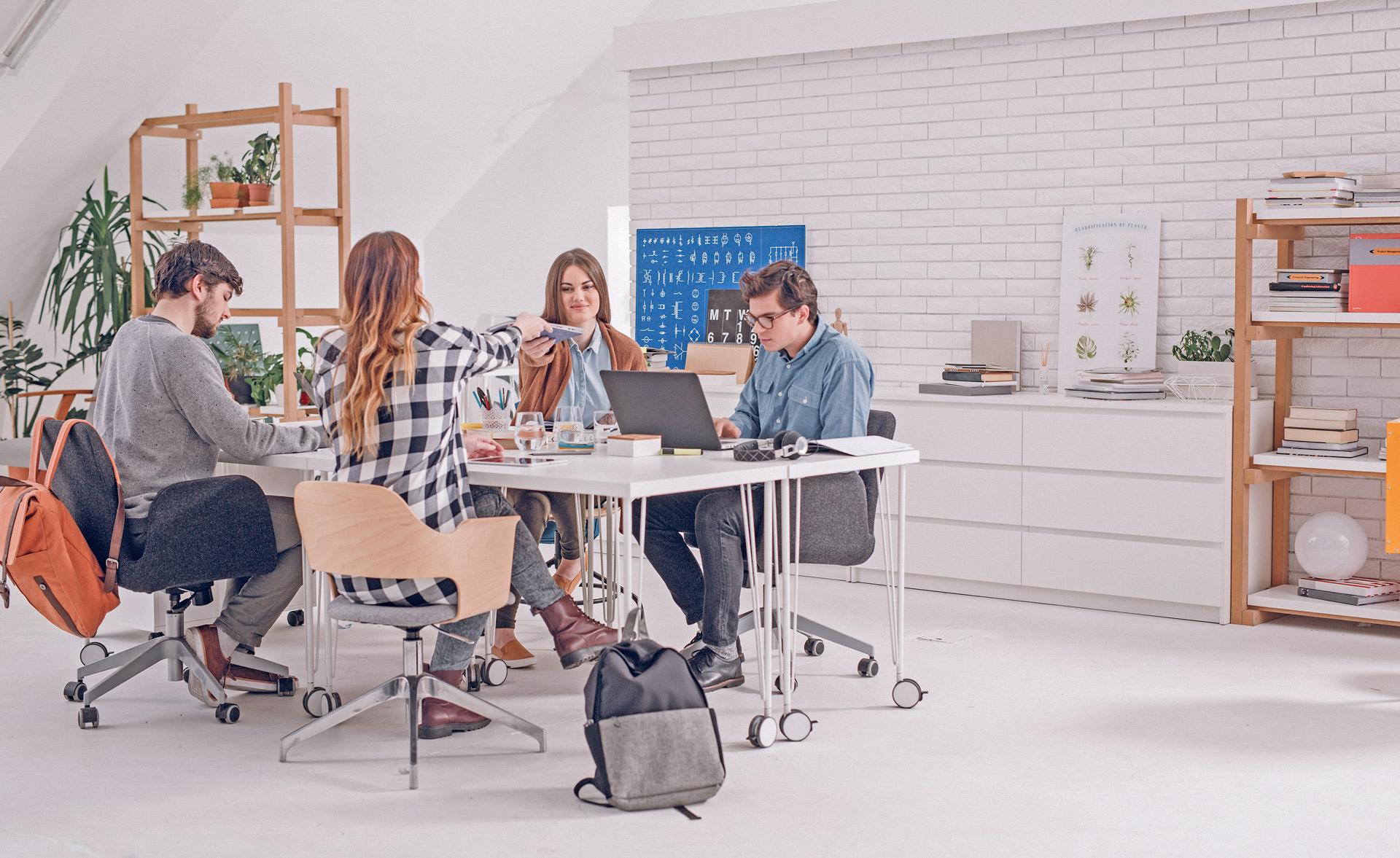 Web & Software Development Agency